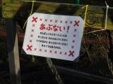 近鉄弥富駅 きんぎょイルミネーション 注意書き