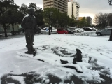 JR鳥取駅 因幡の白兎像