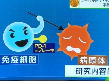 10012018 本庶氏ノーベル賞S2