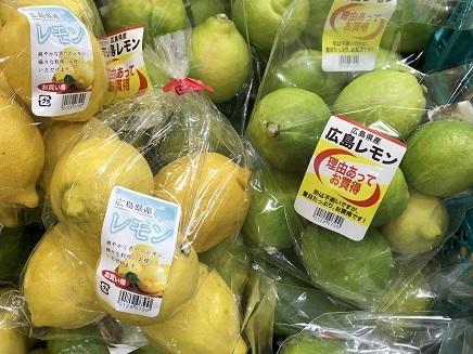 11022018 広島レモン黄&緑 S