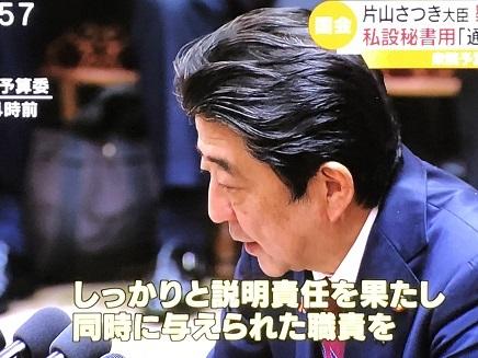 11022018 国会中継安倍総理片山大臣任命責任答弁 S3