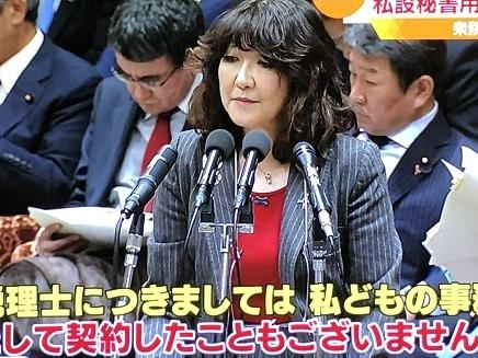 11022018 国会中継片山大臣答弁 S2