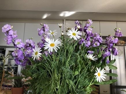 1032019 Flowers S
