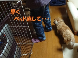 2019_02_15_003ブログ用