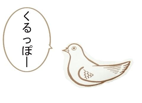 hato2.jpg
