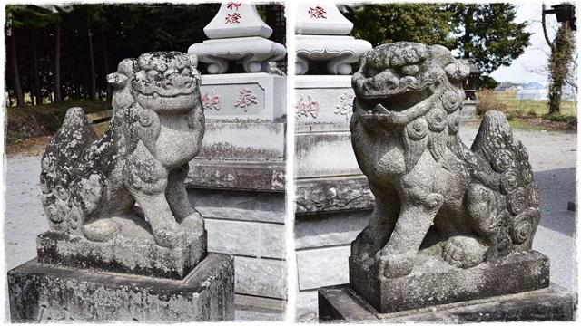 近津神社・狛犬01