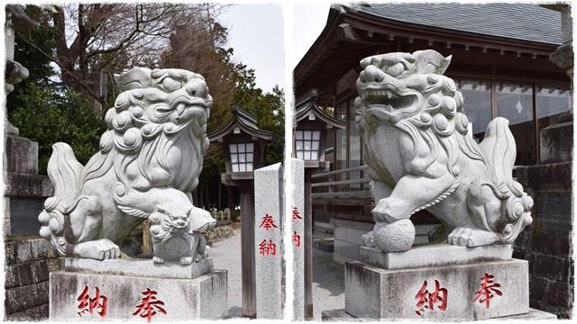 近津神社・狛犬02