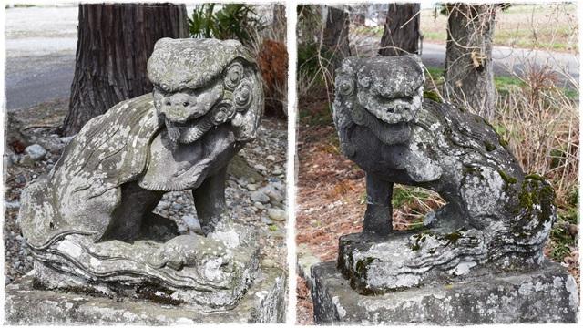 近津神社・狛犬03