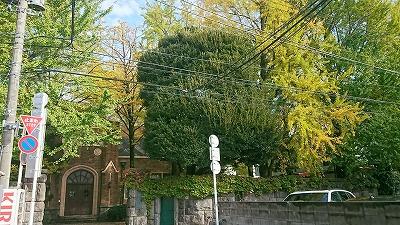181108tokugawa.jpg