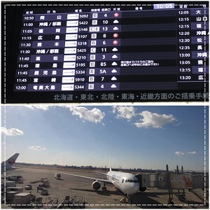 okinawa2.jpg
