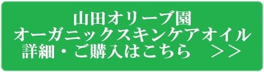 山田オリーブ園 10mlプレゼントバナー3
