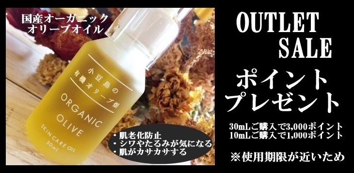 山田オリーブ園 ポイントプレゼント1