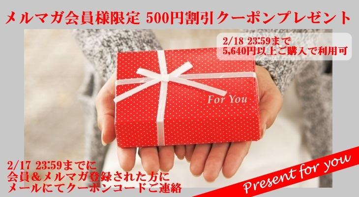 プレゼント写真1