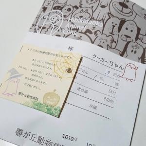 20181012 hibiki