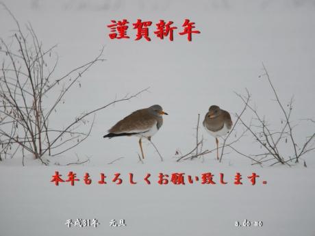 s-2018-年賀