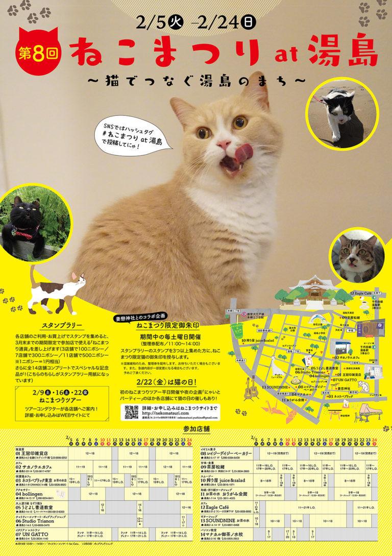 Cat's