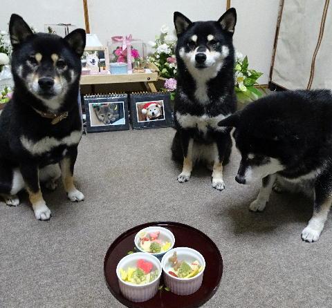 ケーキ 三ワン
