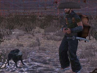 Kenshi特集:男一人に犬一匹その23_03