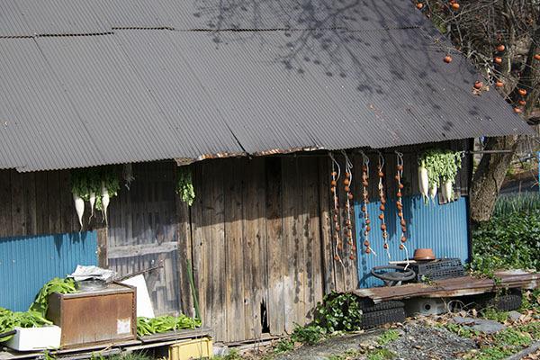 181119-92.jpg