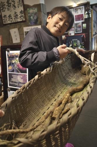 2018年12月23日 カナ山堀り自然薯