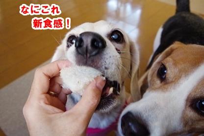 麩菓子 5