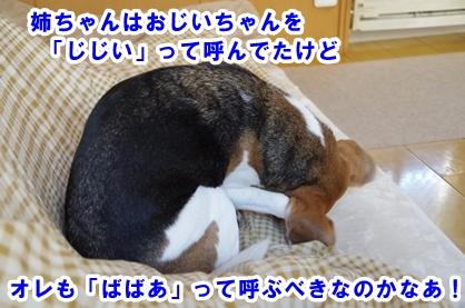 ばばあ 3