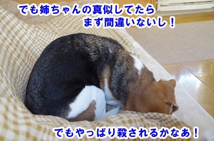 ばばあ 4