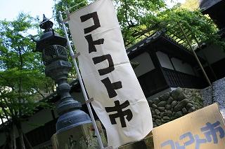 kotokoto-p1-320.jpg