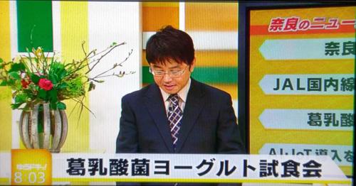 2019013002葛乳酸菌豆乳ヨーグルト種菌セット奈良テレビゆうドキ