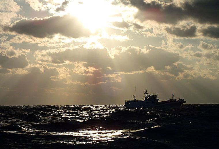 冬の海-5
