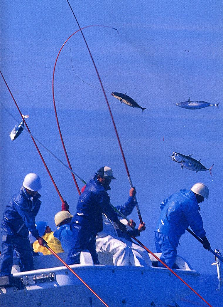 釣り場面-2