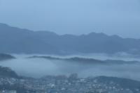 12月の朝霧