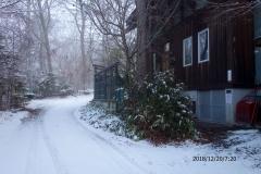 出かける朝、雪が!