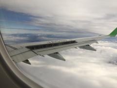 岐路のフライト