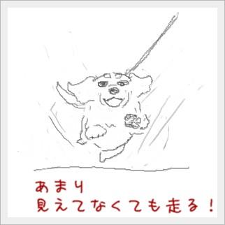 hasiru1.jpg