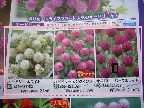 花の種を注文しました
