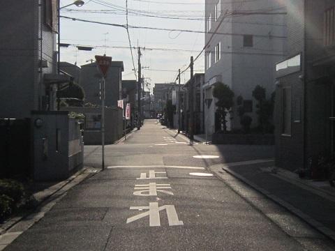 307-36.jpg