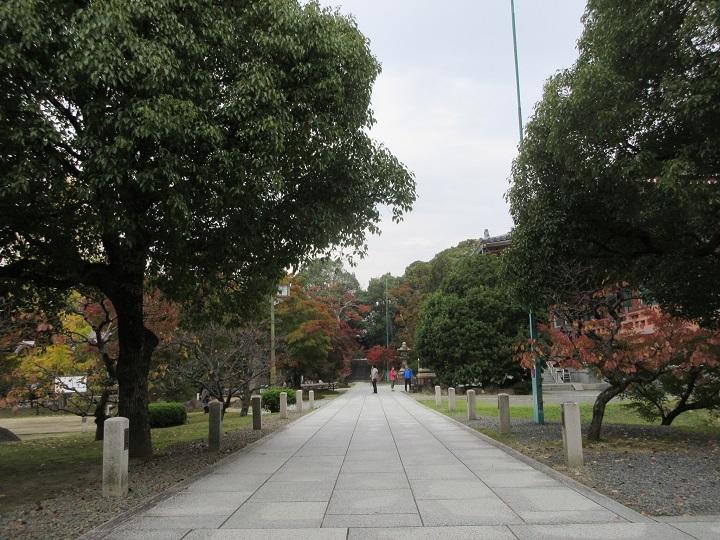 610-31.jpg