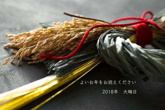 LZ5_9245.jpg