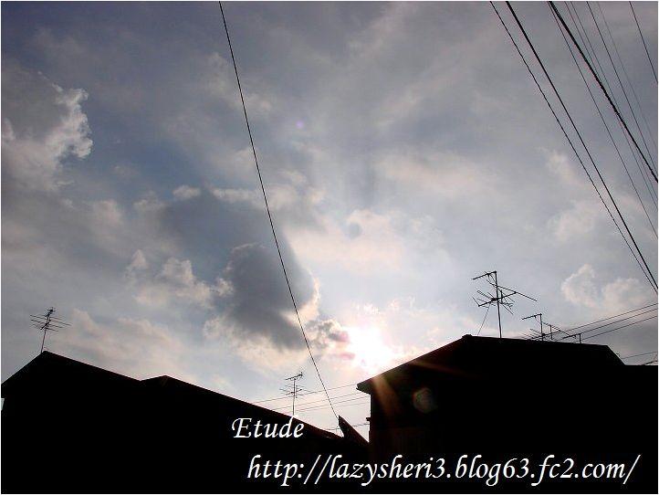 20061101-1.jpg