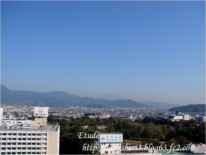 20061111-2.jpg