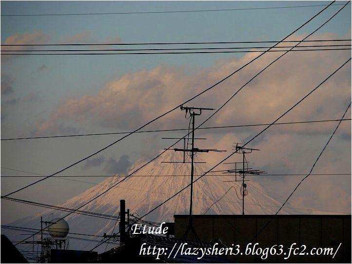 20070113-16.jpg