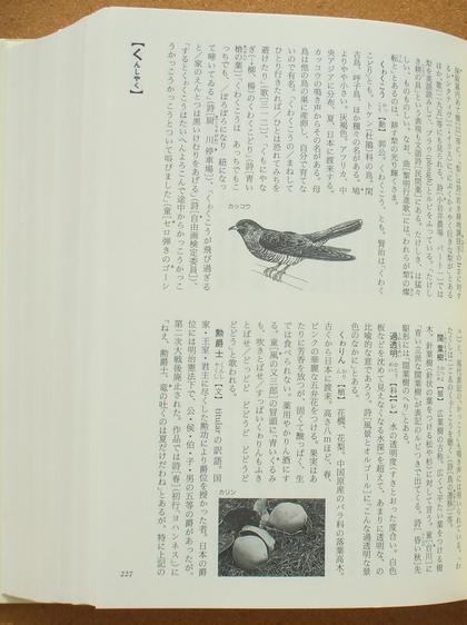 宮沢賢治語彙辞典 06
