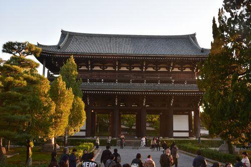301124 東福寺14