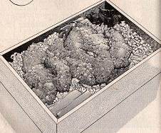 ふわふわ卵の鶏カツ弁当図