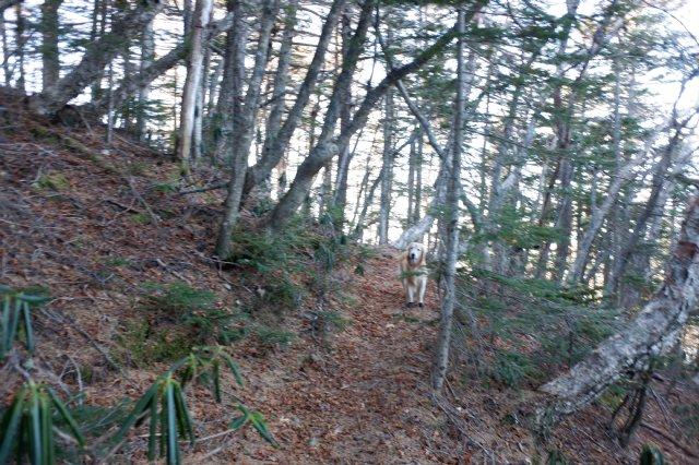 富士山御中道 2018.11.2~3 126