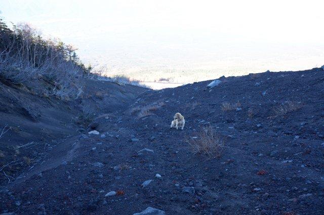 富士山御中道 2018.11.2~3 139