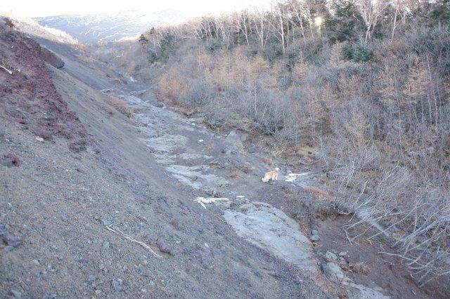 富士山御中道 2018.11.2~3 154