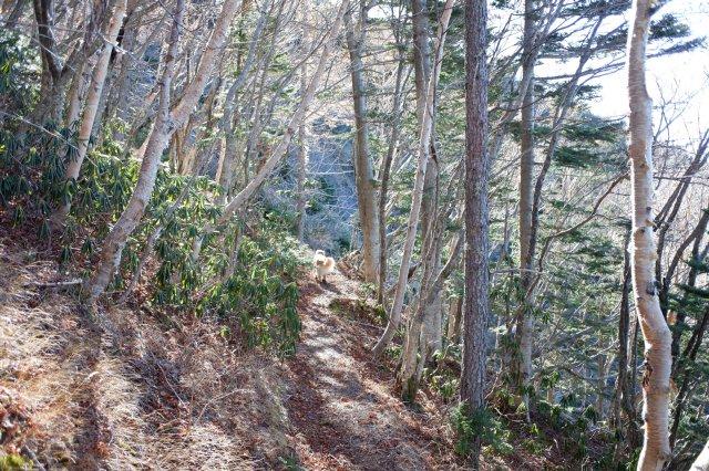 富士山御中道 2018.11.2~3 184