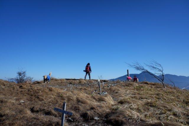 2018.12.2皆で霧ヶ峰高原ハイキング 116